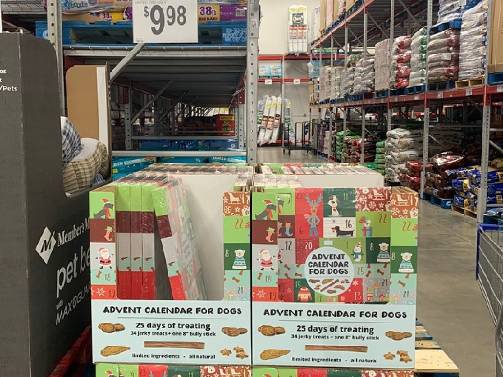 dog advent calendars in boxes on warehouse store floor
