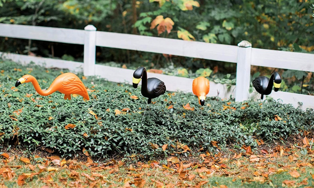 Bloem 10-Pack Spooky Orange & Black Flamingo Halloween Yard Decor (4)