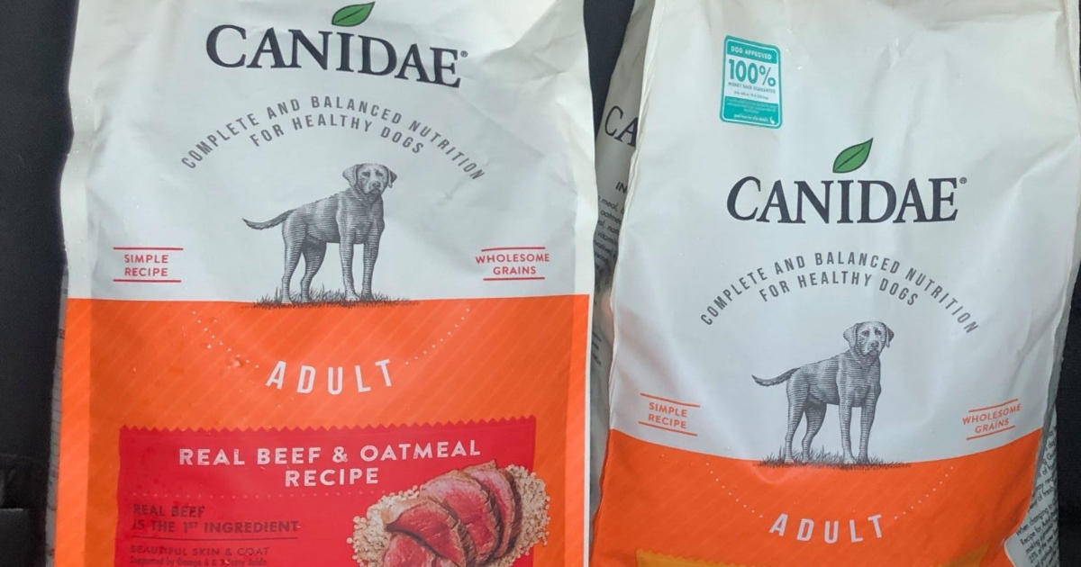Two bags of Canidae Dog food in an orange and cream bag