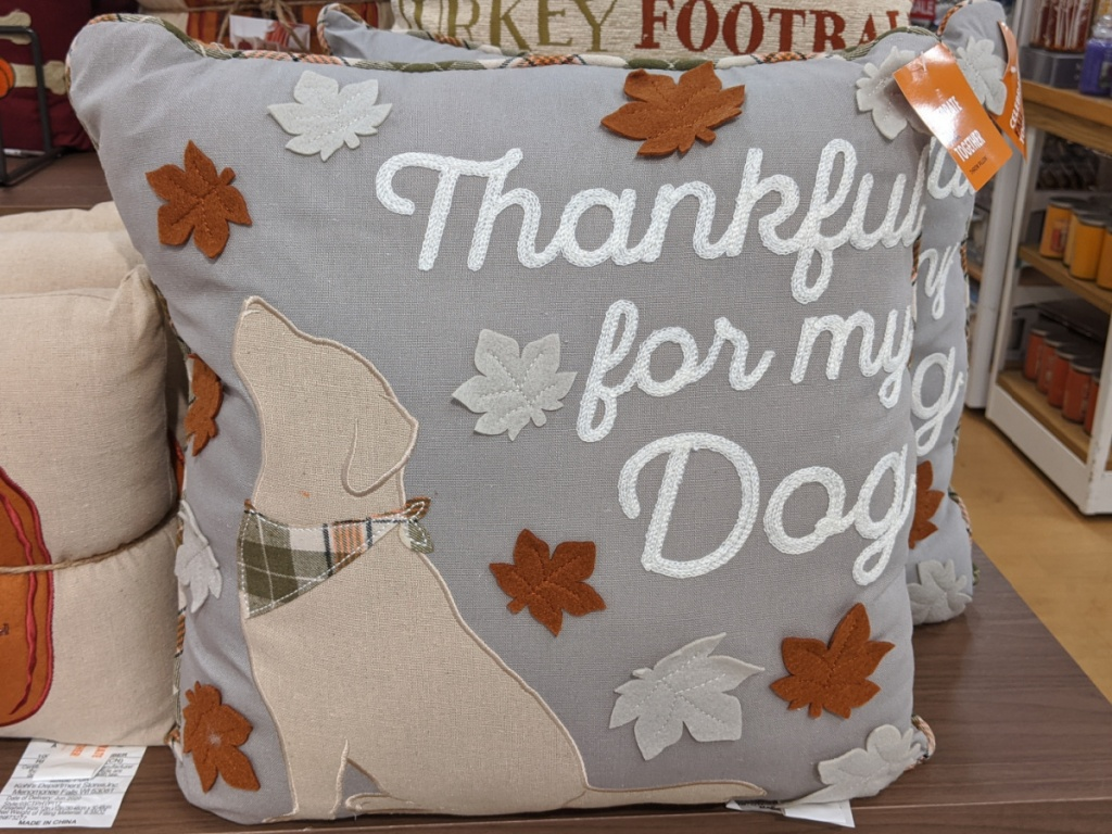 Fall themed dog throw pillow on table in store