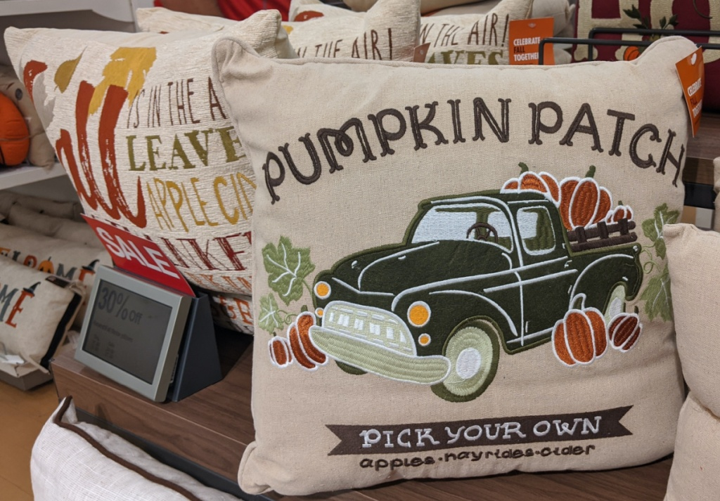 Fall themed throw pillows on table in store