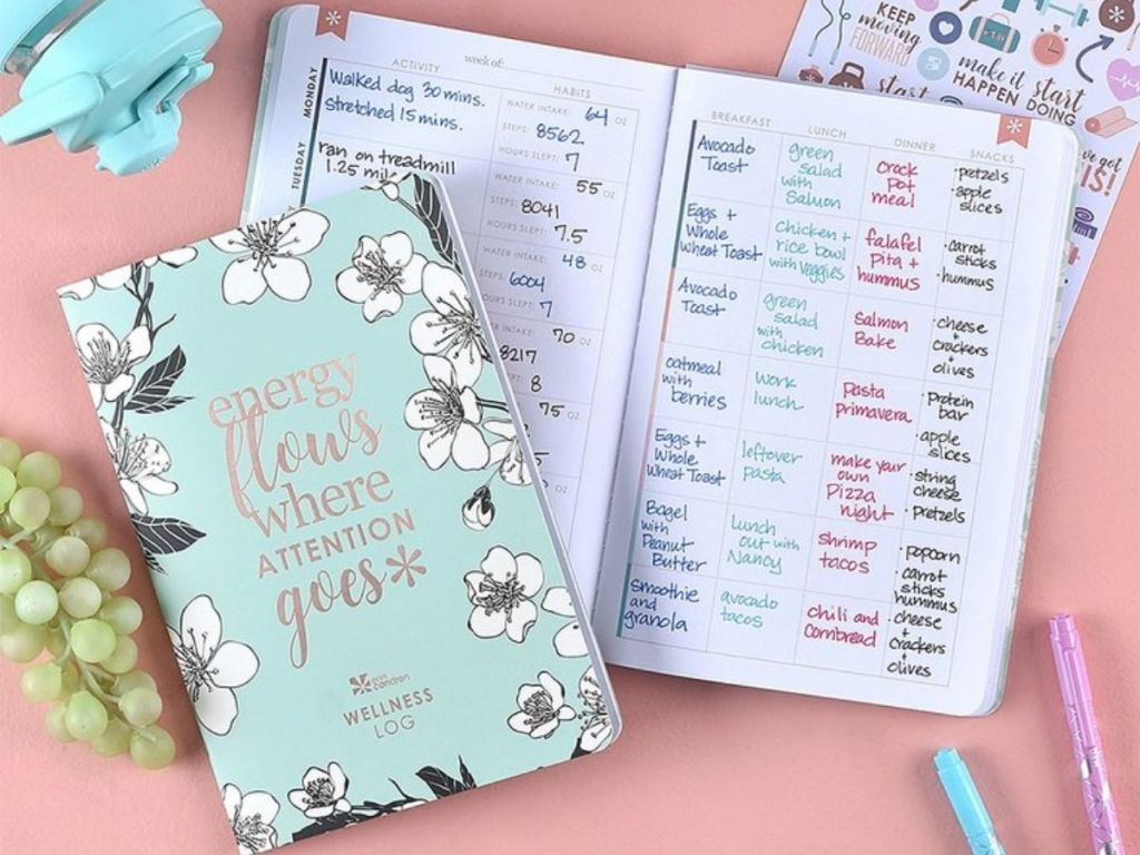 Erin Condren Wellness Planning Bundle with book and stickers