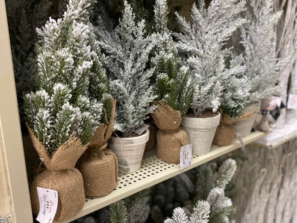 mini glitter christmas trees on store shelf