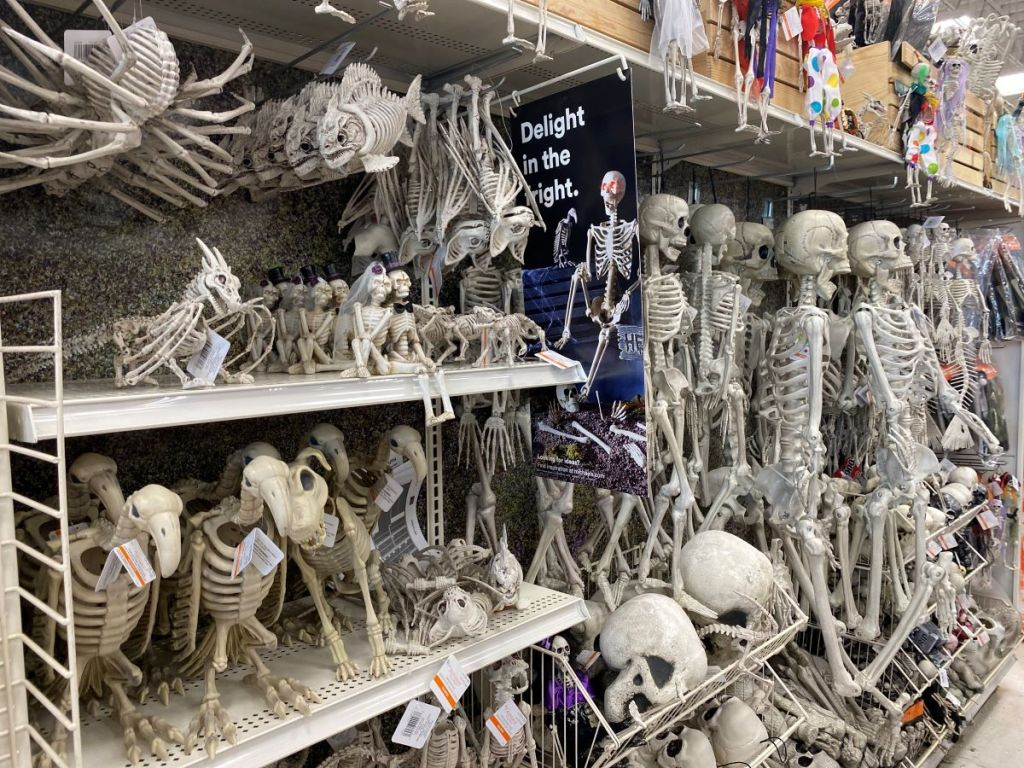 display of skeleton decorations at Michaels