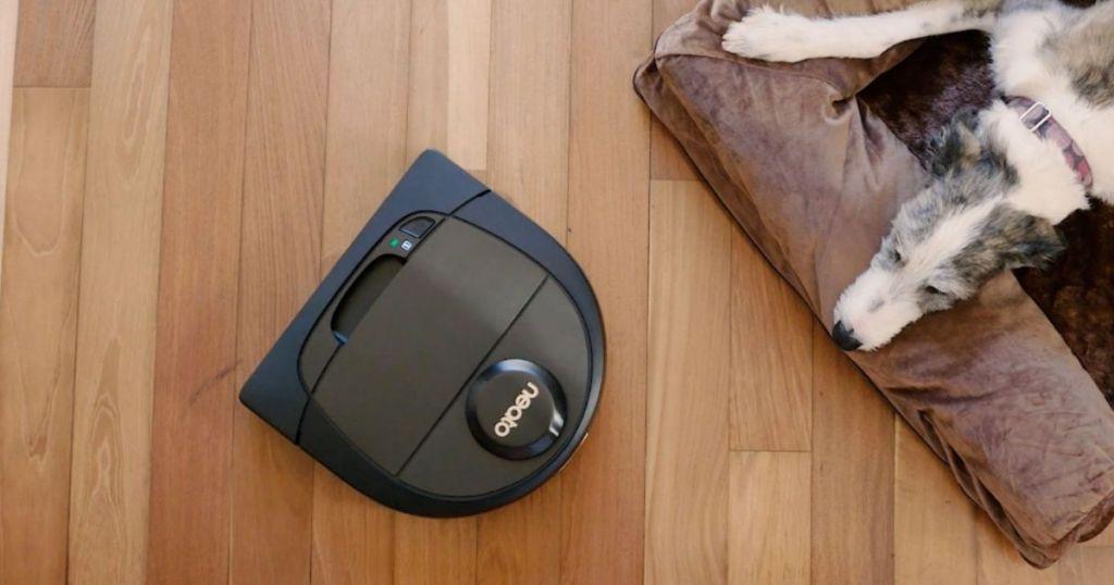 dog looking at a vacuum