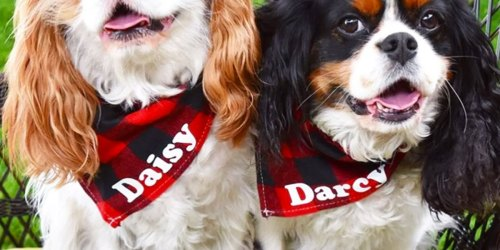 Personalized Pet Accessories from $9.99 Shipped (Regularly $20+) | Bandanas, Pet Mats & More