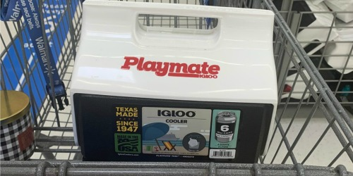 Igloo Playmate Mini Only $7 at Walmart