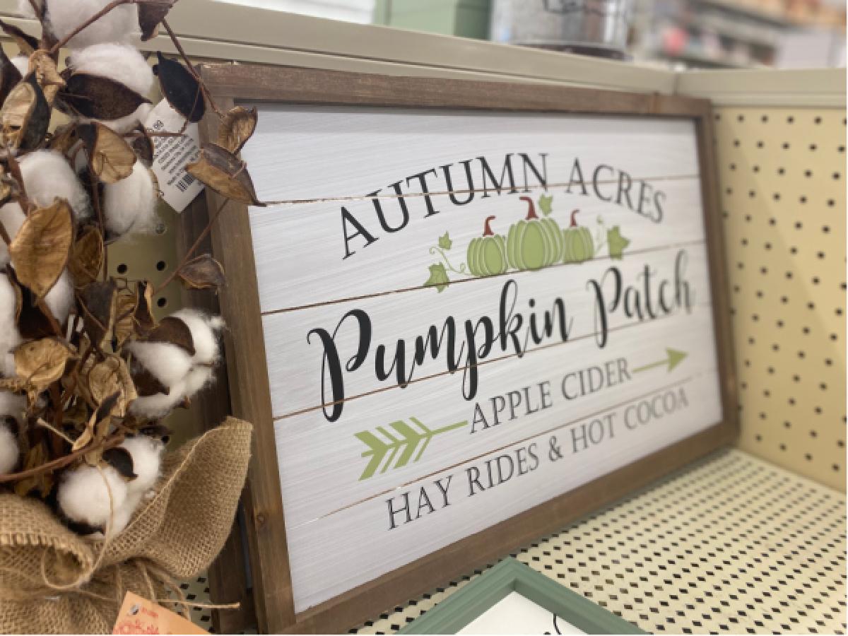 pumpkin patch wall decor on store shelf