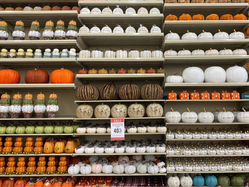 large selection of various pumpkin decor on store shelves
