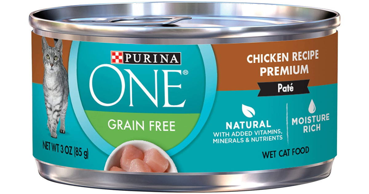 Purina ONE Wet Cat Food Can