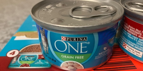 Purina ONE Cat Food 24-Pack from $13 Shipped on Amazon | Just 55¢ Per Can