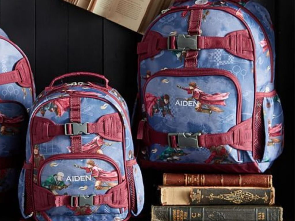 harry potter quidditch backpacks