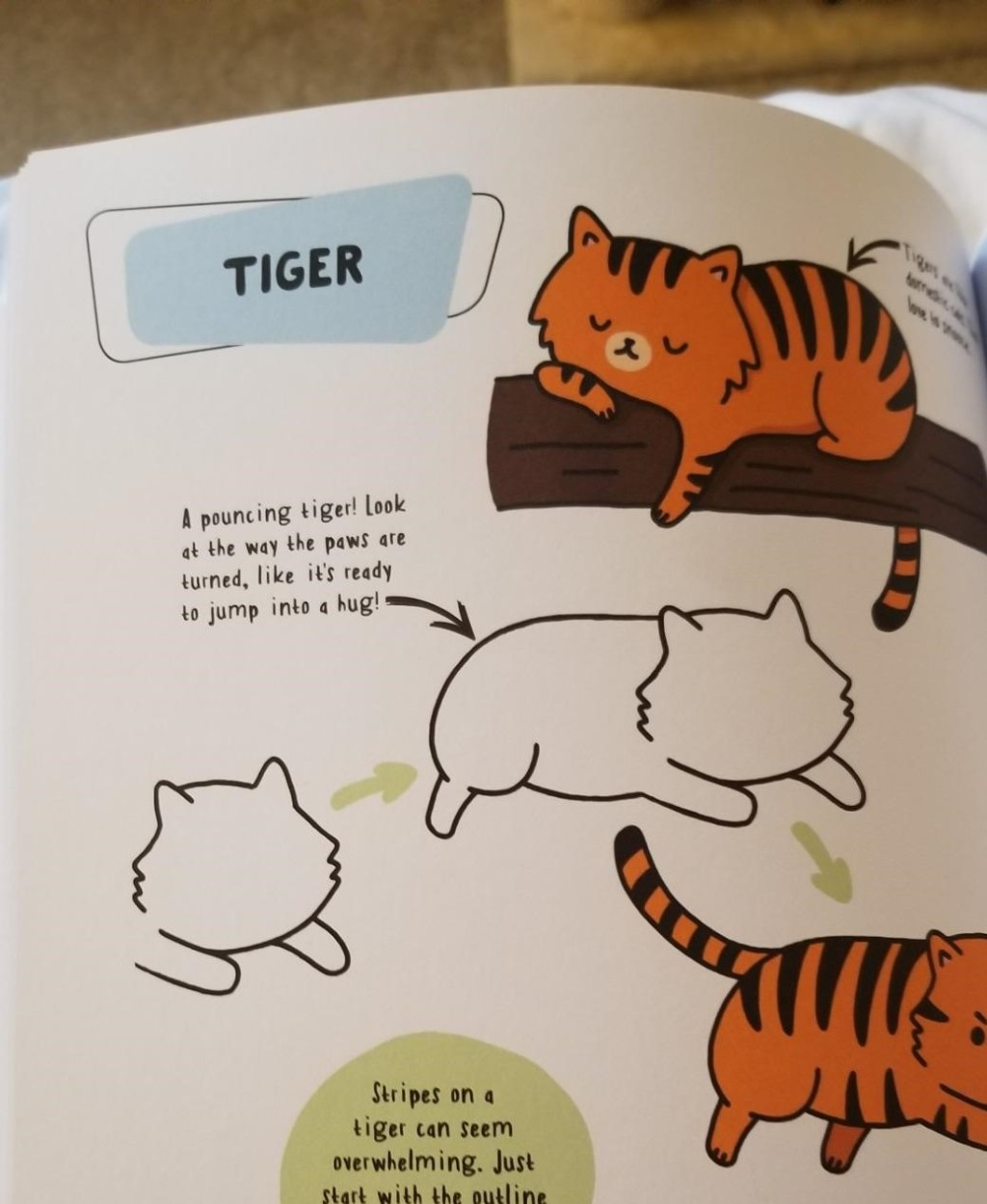 how to draw a tiger page in a book