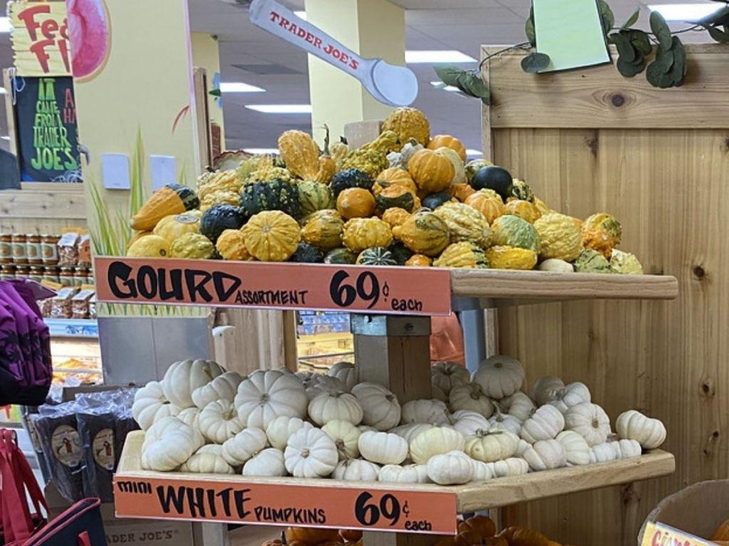 Mini Gourds and Mini White Pumpkins at Trader Joe's