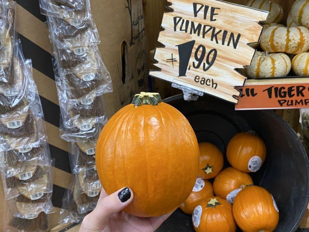 Trader Joe's Pie Pumpkins