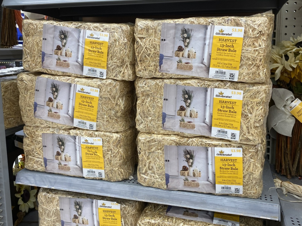 small hay bales in store at walmart
