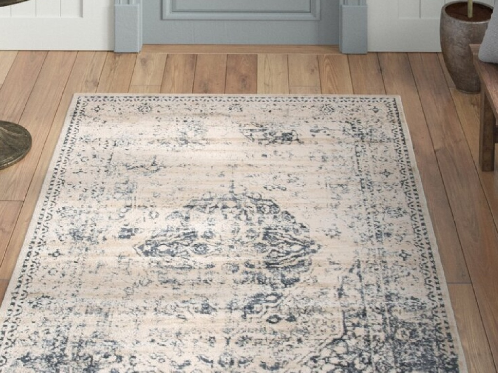 light blue and cream area rug in an entryway