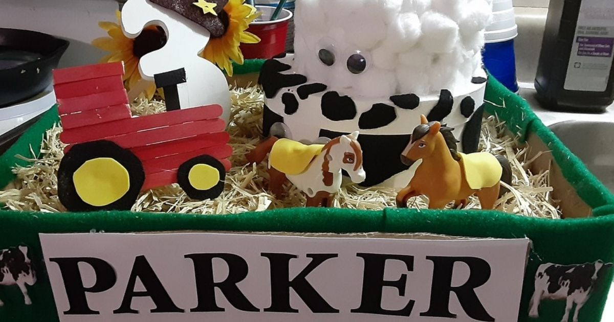 DIY Birthday Box display farm themed and PARKER in front