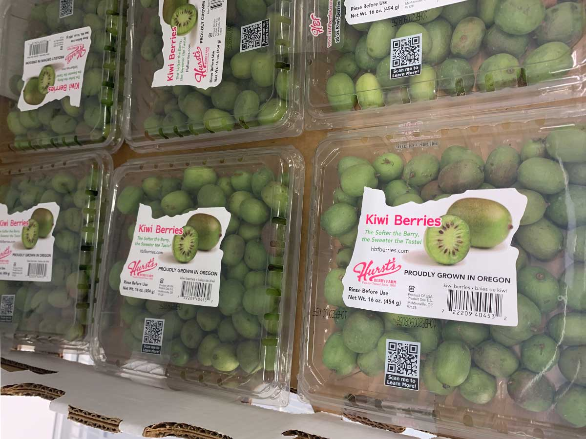 containers of kiwi berries