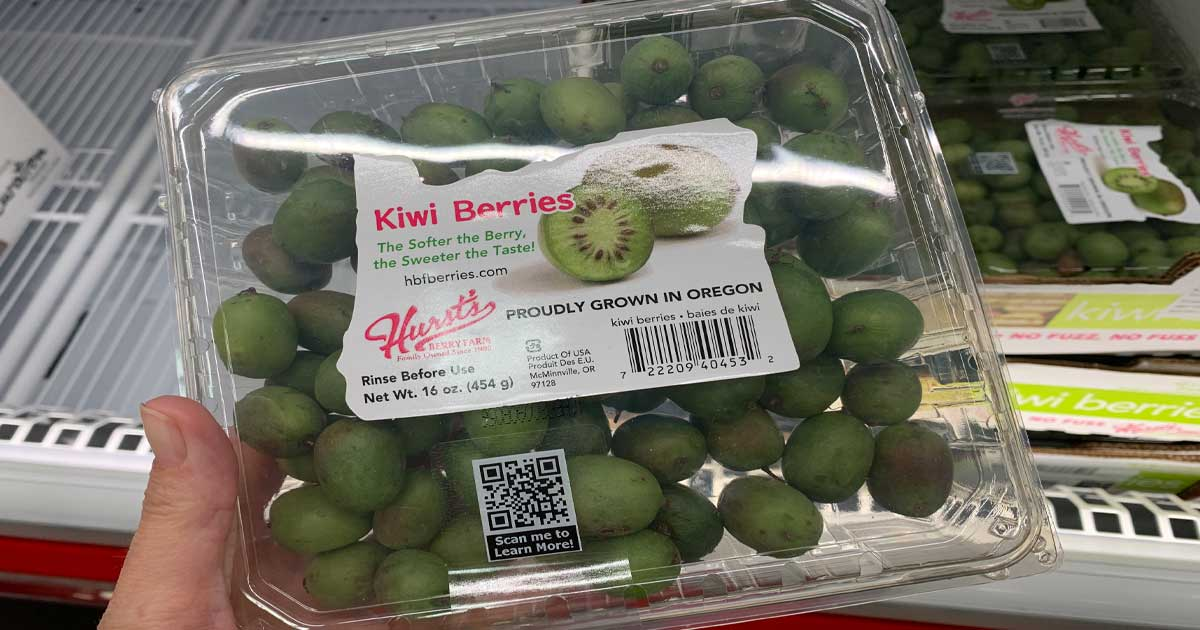 hand holding a container of kiwi berries