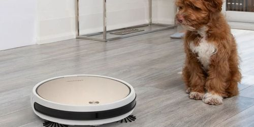 bObsweep Pro Robotic Vacuum Cleaner Only $149.99 Shipped on BestBuy.com