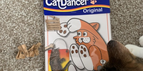 Cat Dancer Toy Only $1.67 Shipped on Amazon | Great Subscribe & Save Filler Item