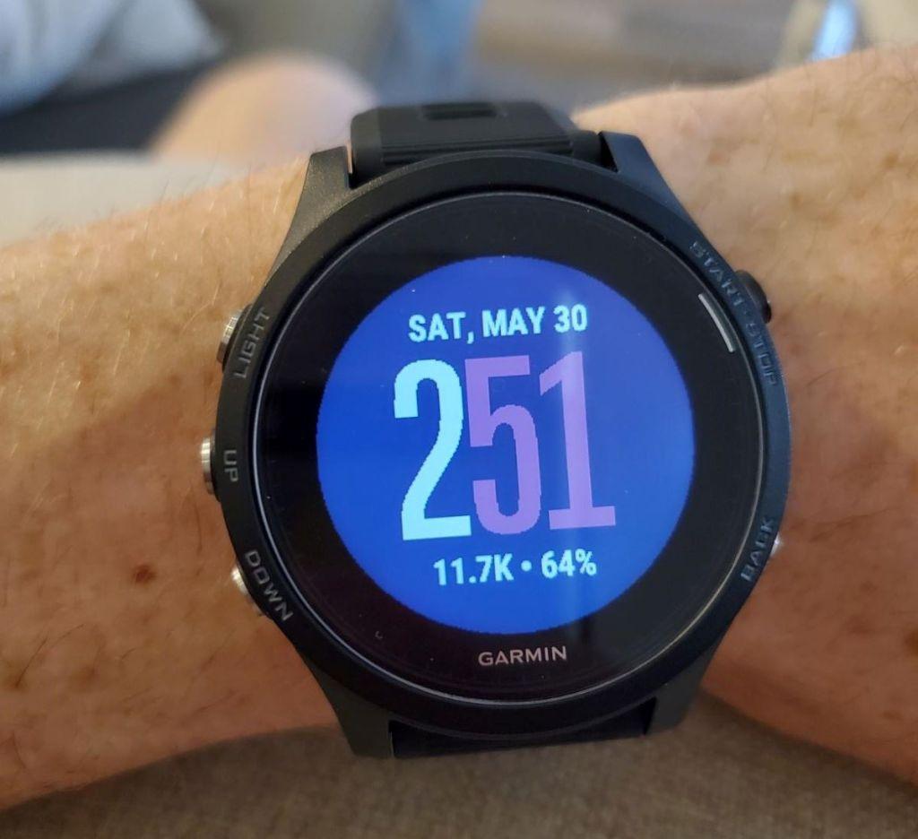 person wearing a Garmin smartwatch