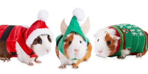 Pet Holiday Costumes from $8.99 on Petco.com