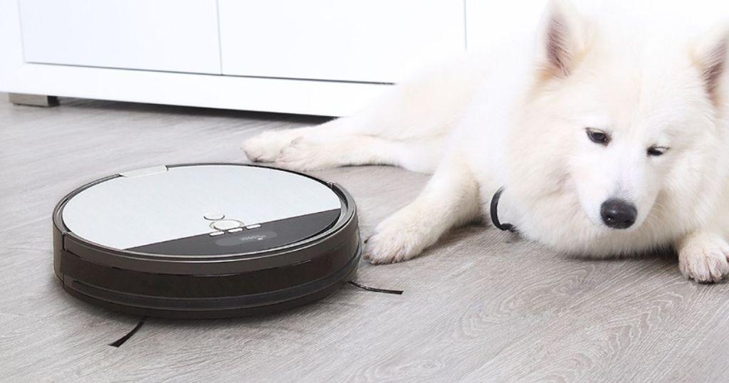 dog laying next to a robot vacuum