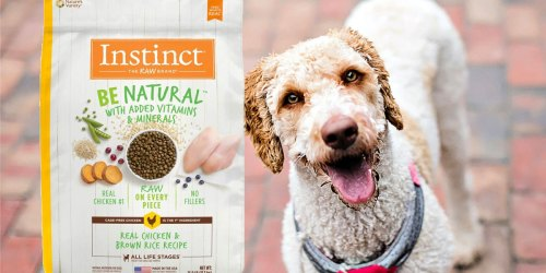 Instinct Natural Dry Dog Food 25lb Bag Just $27 Shipped on Amazon (Regularly $50)