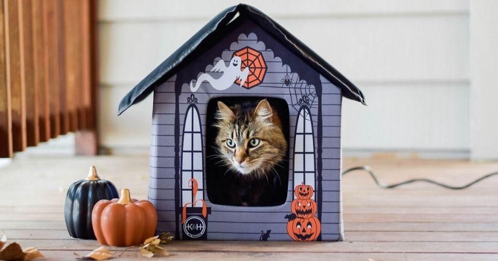 K&H Halloween Theme Heated Cat House