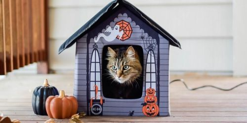 Heated Halloween Cat House Only $36.49 Shipped on Chewy.com (Regularly $160)