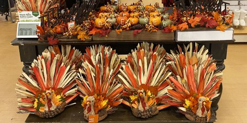 Up to 70% Off Fall & Thanksgiving Home Decor on Kohls.com | Centerpieces, Wreaths & More