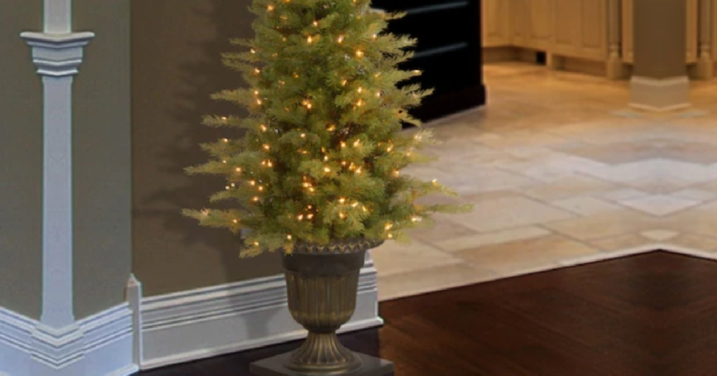 lighted entrance way tree with clear lights