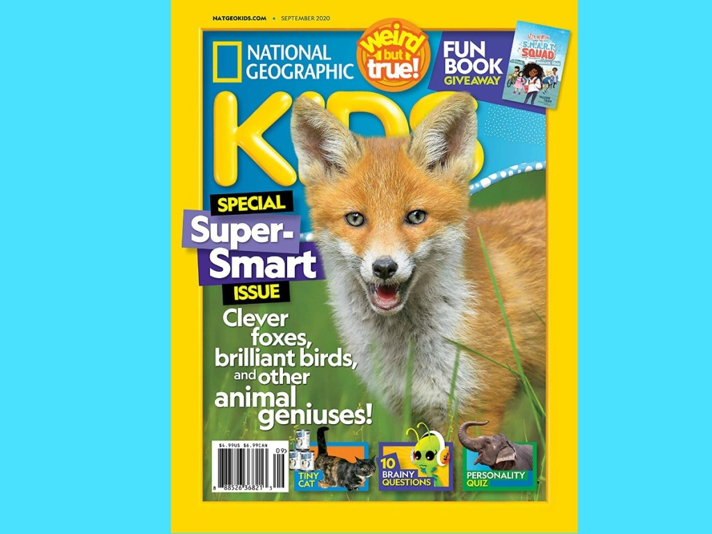 Nature-themed magazine on a blue background