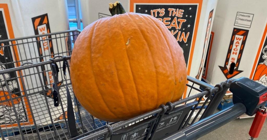 Pumpkin in Aldi cart
