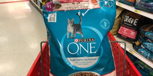 Purina One Dry Cat Food 16-Pound Bag Only $13.85 Shipped on Amazon