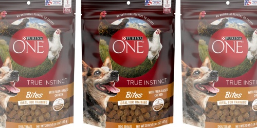 Purina ONE Training Dog Treats Only $3 on Chewy.com (Regularly $12)