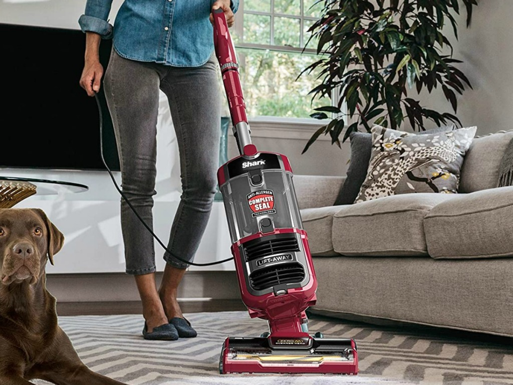 Shark brand vacuum in red in a living room