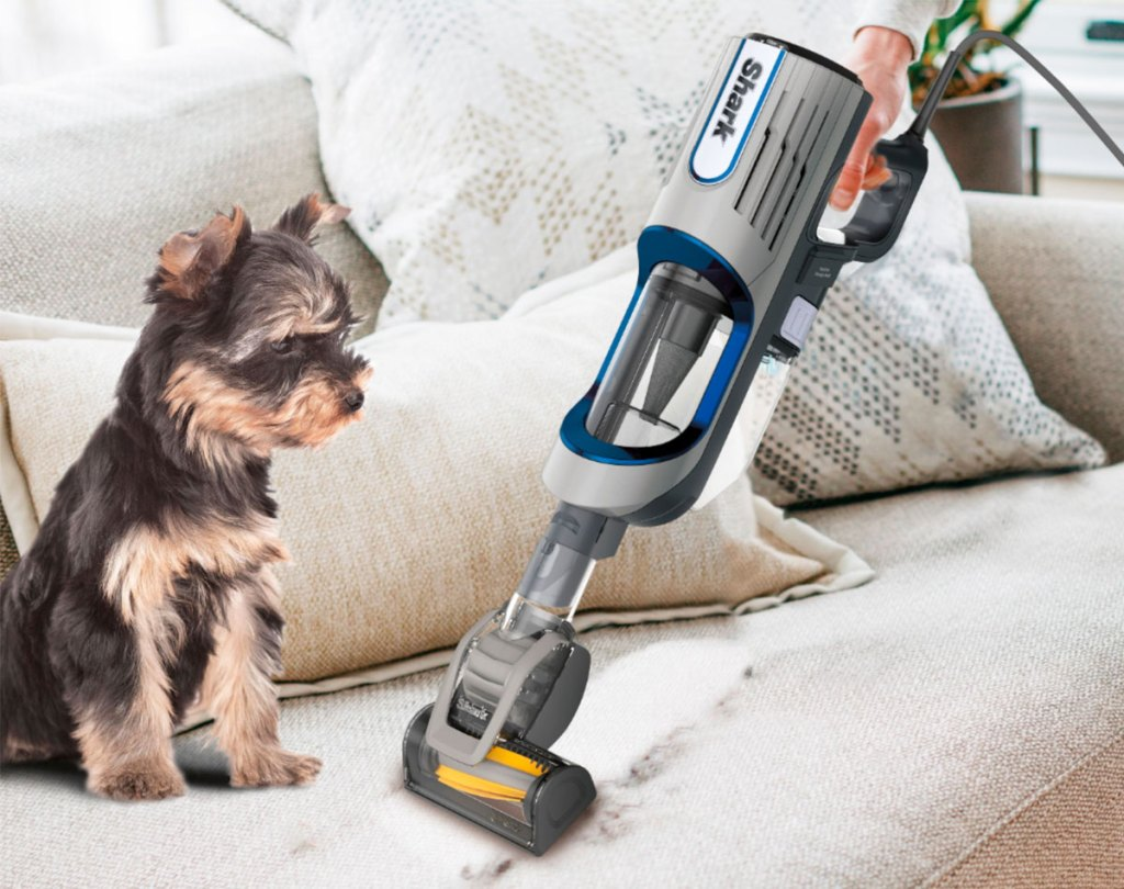 person using a shark handheld vacuum to clean pet hair off a couch near a dog