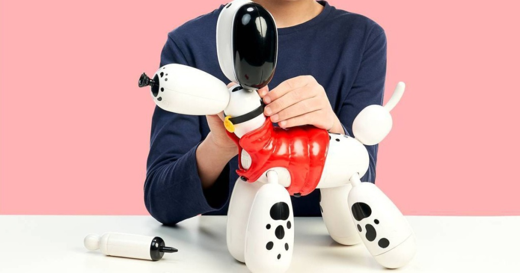 boy playing with toy balloon dog