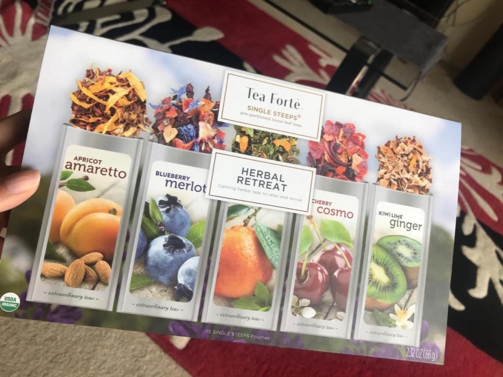 hand holding box of Tea Forte Herbal Retreat