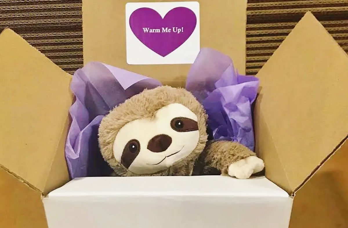 fuzzy sloth warmies plush peking out from a box with purple tissue paper