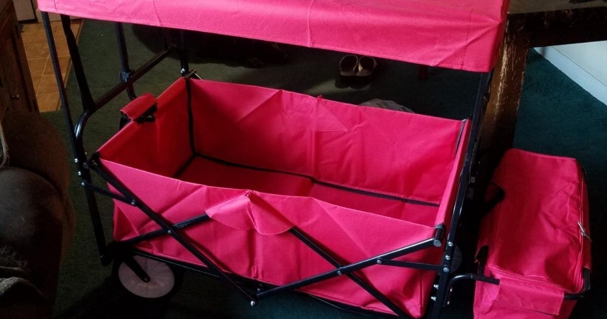 red wagon with canopy