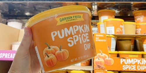 HUGE Tub of Pumpkin Spice Dip Only $5.39 at Costco