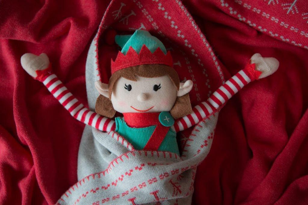girl elf in pocket