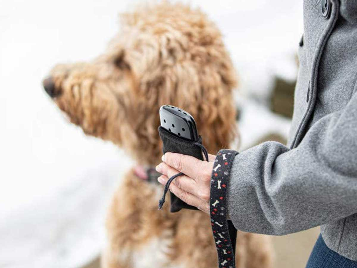 woman holding hand warmer while outside walking dog