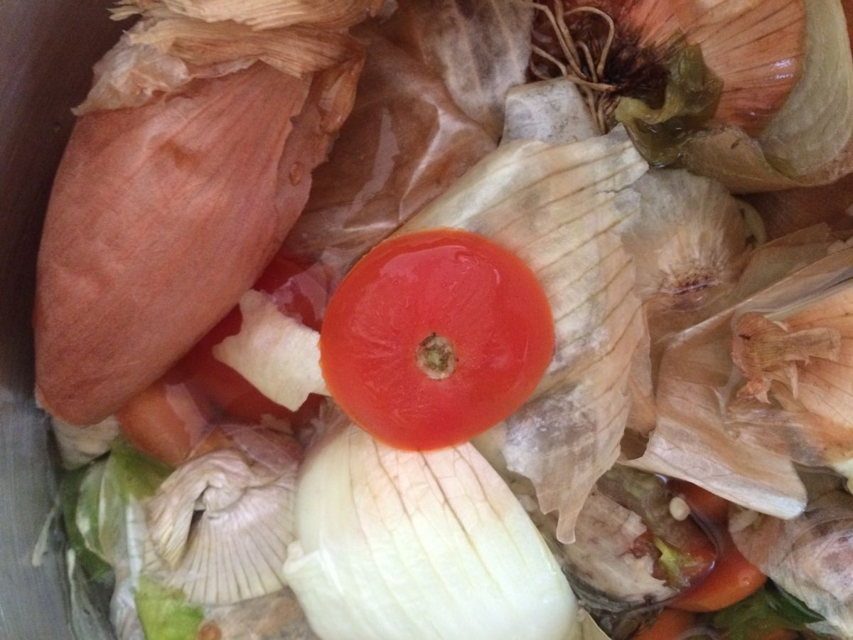 pile of vegetable scraps