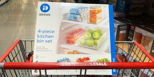 iDesign 4-Piece Kitchen Bin Set Only $19.99 at Costco | Great Reviews
