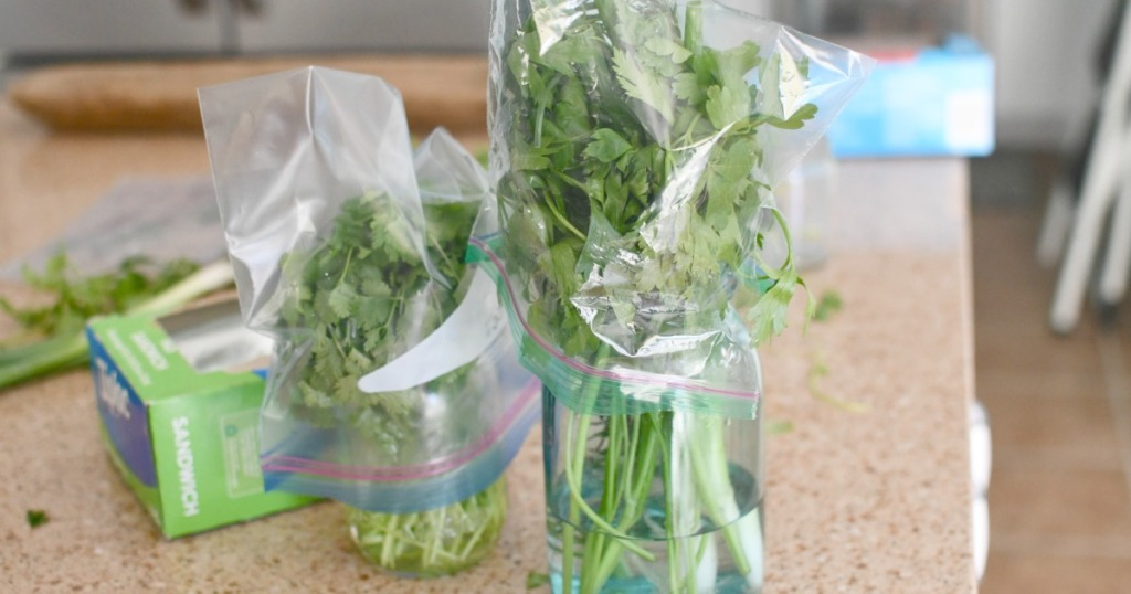 keeping herbs in jars with water